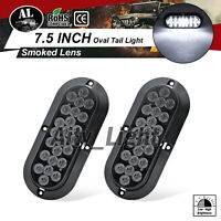 "2 PCS 6"" Oval Sealed Mount 24 LED Smoked / White Reverse Truck RV Tail Light 12V"
