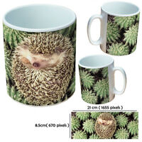 HEDGEHOG MUGS PERSONALISED CUSTOM TEA OR COFFEE MUG GIFT FOR HEDGEHOG LOVER