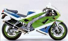 Kawasaki ZXR400 H Stainless oval twin outlet Motorbike Exhaust Can