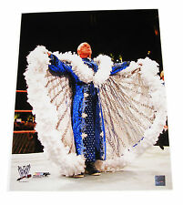 WWE NATURE BOY RIC FLAIR 16X20 UNSIGNED LICENSED PHOTOFILE PHOTO 3 VERY RARE