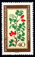 761 postfrisch DDR Briefmarke Stamp East Germany GDR Year Jahrgang 1960