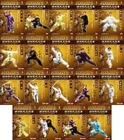 Chen Style Tai Chi Taijiquan Taiji Series - Complete Set by Chen Zhenglei 40DVDs