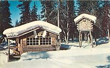 Snow Covered Trappers Cabin Alaska Postcard