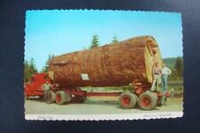 908) OLD TRUCK AND CREW & 13,000 BOARD FEET GIANT FIR LOG FROM OREGON-WASHINGTON