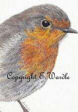 "ACEO 2.5"" X 3.5"" Print of Original ROBIN #1 Bird Miniature Pencil Drawing"