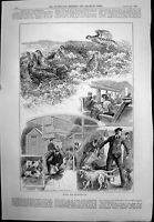Old Print Bound For Heatherland Dogs Aboard Train Signor A Seppilli 1893 19th