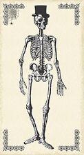 Chillingsworth Esqueleto Crema Algodón Acolchado Halloween Panel De Tela-makower