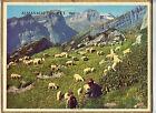 CALENDRIER, ALMANACH PTT - ANNEE 1962 - RACONTE BERGER (recto), ESCAPADE (verso)