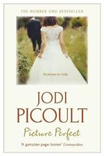 Picture Perfect by Jodi Picoult, Book, New (Paperback)
