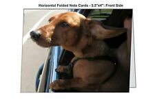 Miniature Dachshund Birthday Greeting Card Animal Rescue Scrappy Dizzle Designz