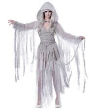Haunting Beauty Ghost Bride Spirit Halloween Dress Up Womens Costume