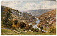 SYMOND'S YAT - A R Quinton 1384 - J Salmon - Herefordshire - c1930s era postcard