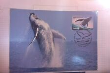 2006 AUSTRALIA WHALES DOWN UNDER HUMPBACK WHALE MAXI CARD