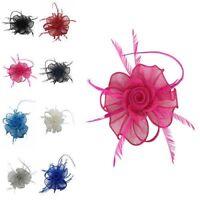 Small Flower Feather Hair Hat Fascinator Headband Clip Wedding Royal Ascot Race