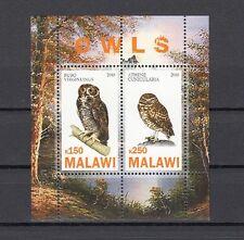 Malawi, 2010 Cinderella issue. Owls, Birds sheet of 2. *