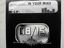 SMP Pres. DJ T-Kay - In Your Mind
