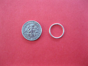 Silver 12mm 18g Endless Hoop Nose Ring / Earring