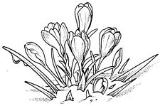 Unmounted Rubber Stamps, Spring Flowers, Seasonal, Floral Stamps, Crocus in Snow