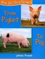Powell, Jillian, Piglet To Pig (How Do They Grow), Very Good, Hardcover
