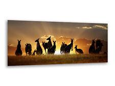Wandbild Glas-Bild Druck auf Glas 100x50 Deko Landschaften Straße Australien