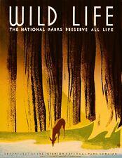 Wildlife National Parks United States Vintage Travel Advertisement  Poster