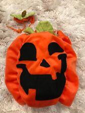 Pet Pumpkin Halloween Costume