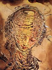 Salvador Dali Raphael's head shatters giclee 12X17 canvas print art reproduction