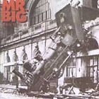 Mr. Big - Lean into It (1991) CD
