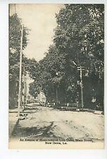 Main Street NEW IBERIA LA Spanish Moss Live Oaks Dirt Road—Antique Parish 1910s