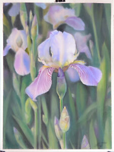 IRISES FLOWERS - ORIGINAL PASTEL DRAWING - ARTIST FROM EUROPE