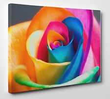 Colorful Rose Flower Wall Art X LARGE 20x30 inches Box Canvas Print Picture