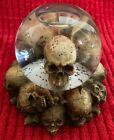 Globe Skull - Elgate Pagan Wiccan Halloween