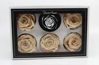 15 Stück Kunstrosen Rose Kunststoffrose Plastikrose Stoffrose