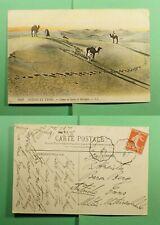 DR WHO 1909 FRENCH ALGERIA SAND DUNES/CAMEL POSTCARD  f54014