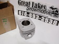 Arctic Cat 431cc Fan-Cooled Snowmobile Engine Reman. Cylinder Z 440 Jag Panther