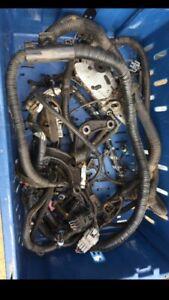 L67 Engine Loom