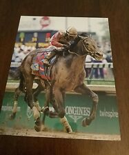 Orb 2013 kentucky derby horse racing 8 by 10 photo