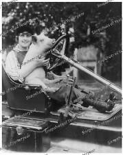 Vintage photo-Woman in Old Car with Pig-8x10 in.
