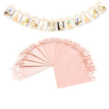 1st Birthday Recording 1-12 Month Photo Banner Garlands Monthly Bunting Pink UK