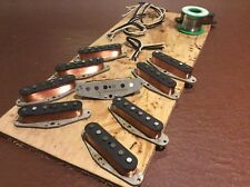 Evil Sheep hand wound guitar pickups.