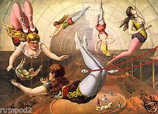 Vintage Circus Poster /Flying Trapeze Artists/Circus Acrobats/Big Top/16x22