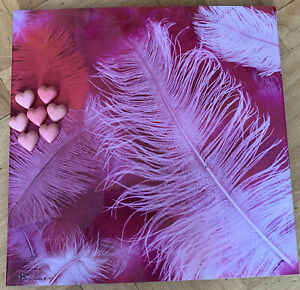 Pink Feather Design Metal Magnetic Notice Message Board 46 x 45cm