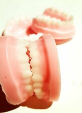 FALSE TEETH DENTURES SOAP/Chocolate /Ice MOULD tray, Silicone, High Quality mold