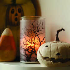 Root Candle / Spooky Tree/Bottle Light with a White Spellbound candle -Halloween