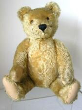 "Large 20"" 1950's Steiff Original Teddy Bear Curly GOLD Mohair  w/ ID  MINT!"
