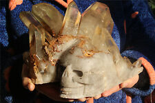 6655g PRETTY natural clear Cluster QUARTZ Crystal Skull EYE HEALING