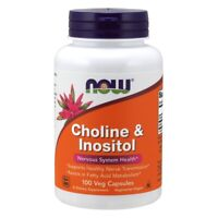 NOW Foods Choline & Inositol 500 mg, 100 Capsules  FREE SHIPPING. MADE IN USA