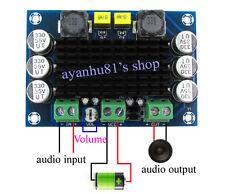 DC 12V-24V TPA3116 D2 100W Mono Channel Digital Audio Power Amplifier Board car
