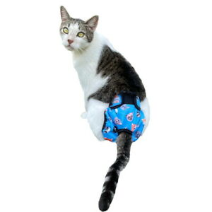 Blue Kitty Knickers Washable Cat Pants - Diaper Nappy Physiological Stud Undies