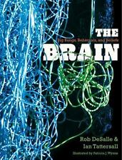 The Brain: Big Bangs, Behaviors, and Beliefs, Tattersall, Ian, DeSalle, Rob, Ver